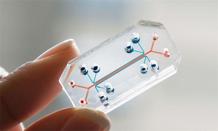 Новый специализированный чип